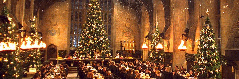 Harry Potter-Noel