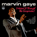 cover Marvin Gaye I heard it through the grapevine