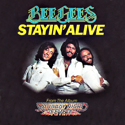 cover Bee Gees Staying alive
