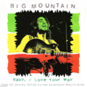 cover Big Mountain Baby, I Love Your Way