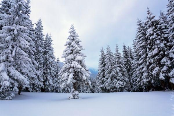 décor neige
