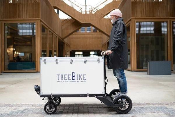 Tree bike segway cargo