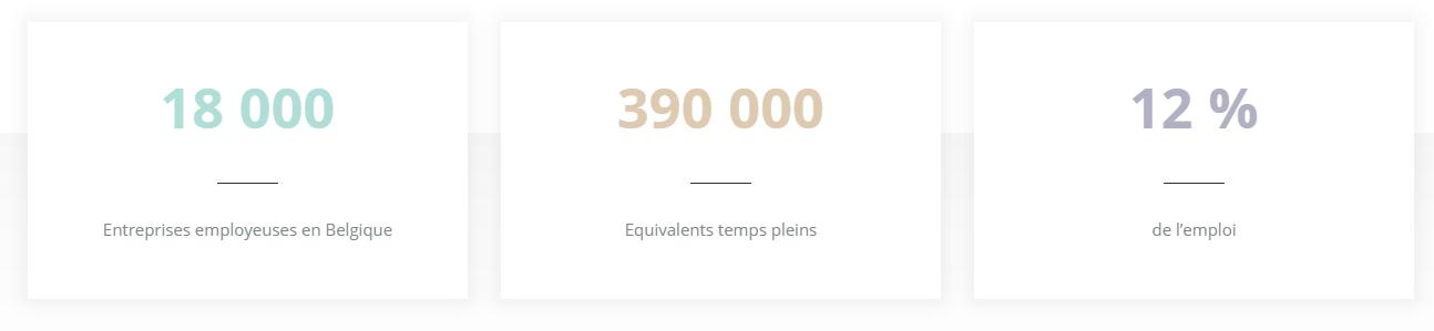 economie sociale chiffres belgique