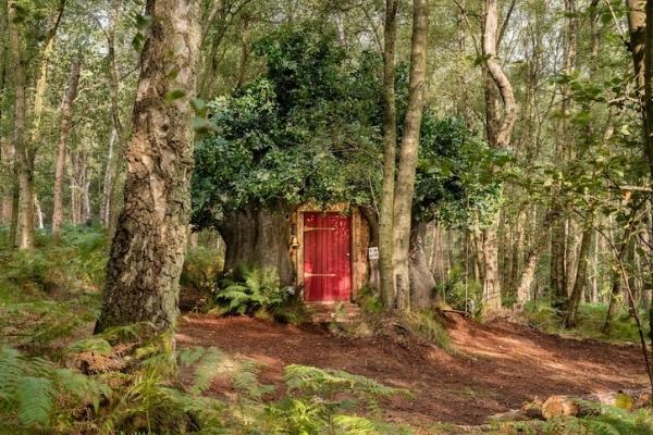 La vraie maison de Winnie l'Ourson