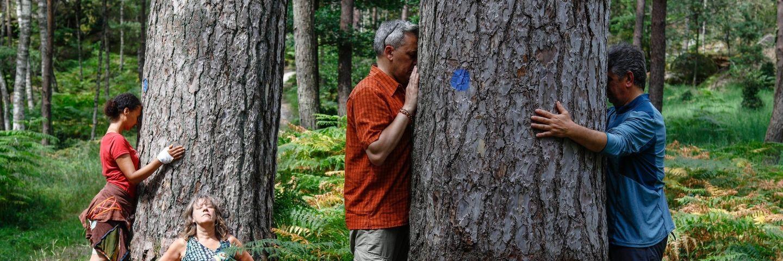 des gens embrassent des arbres - sylvothérapie